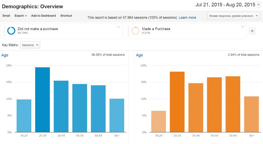 Google Analytics Demographics Overview Segmented