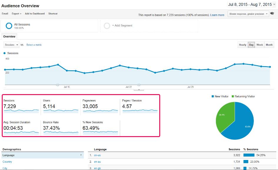 Google Analytics Overview Report